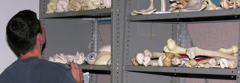Student in the Anatomy Lab